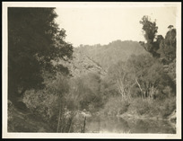 View of Mokau River