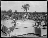 Boxing championships of the New Zealand Division in France during World War I