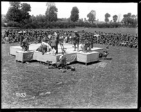 Boxing championships of the New Zealand Division at Doulieu, France during World War I
