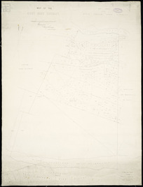 Map of the Cust Road district [cartographic material] / Thomas Cass, chief surveyor.