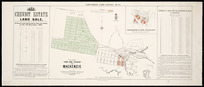 Canterbury Land District. No. 73 [cartographic material] : plan of the town and suburbs of Mackenzie.