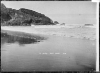 Beach at Te Henga