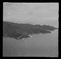 Mayor Island, Whangamata Harbour