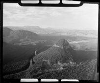 Pine forest near Atiamuri, Taupo District, Waikato Region, featuring Pohaturoa Rock and Waikato River