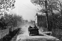 Kaye, George, 1914- : NZ jeeps on a road near the Senio River, Italy