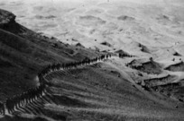 An Egyptian desert showing a line of RMT Coy soldiers, in training