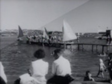 Wellington 1950s