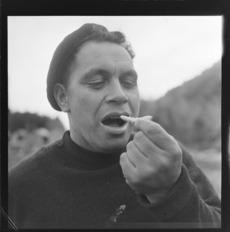 Māori man eating a huhu grub