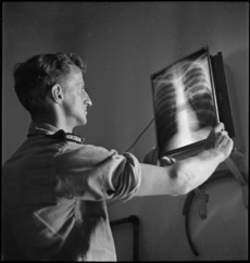 X-Ray assistant and X ray plate.