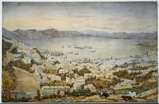 Te Aro and Wellington Harbour