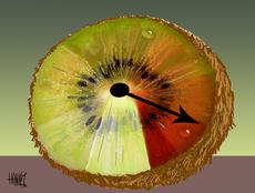 Kiwifruit industry threatened
