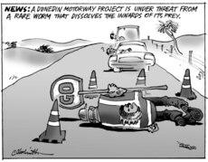 Dunedin motorway project under threat from a rare worm