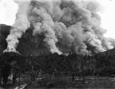The Beginning of bush burn