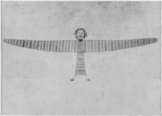 A Māori kite