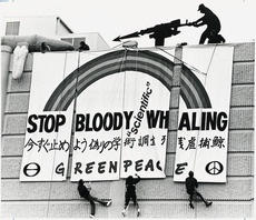 Greenpeace members protesting against whaling
