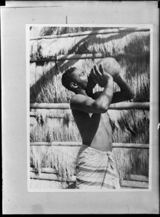 Pacific Island man drinking from a coconut