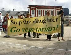 Advocating vegetarianism