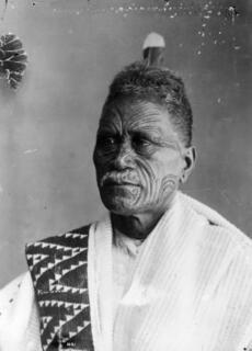 He Whakaputanga
