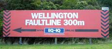 The Wellington fault