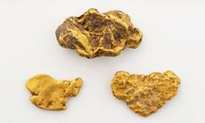 Gold nuggets and flakes