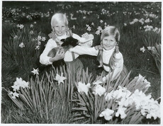 A lamb and two girls in Spring.
