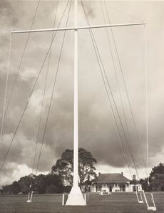 Flagpole, Treaty of Waitangi