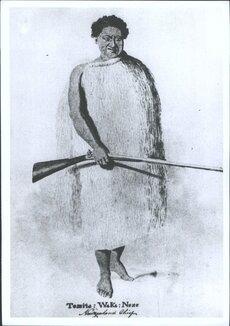Tamati Waka Nene
