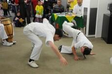Capoeira - martial art