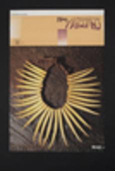 Fiji artefacts