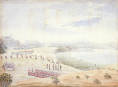Battle for Puketutu Pa