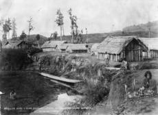 Māori village at Te Kumi