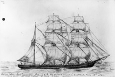 Emigrant ship Ellen Lewis