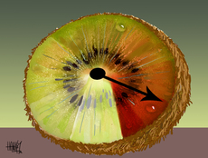 Kiwifruit industry threatened