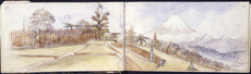 Warre, Henry James, 1819-1898 :Te Arei. Oct 17. [1864]