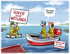 "Save our wetlands'. ""You were saying?"" Welcome to the S. Island"