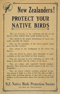 New Zealanders! protect your native birds