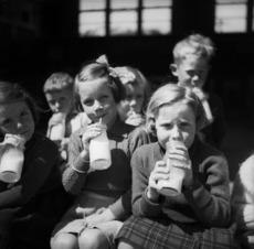 School girls drinking milk