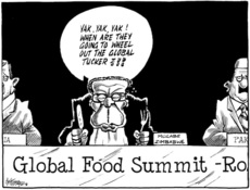 Global food summit - Rome