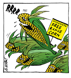 Monsanto Free-Range Corn