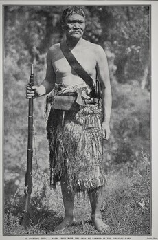 IN FIGHTING TRIM: A MAORI CHIEF WITH THE ARMS HE CARRIED IN THE TARANAKI WARS.