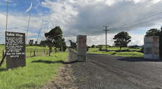 Protest signs and flags on Ihumatao Quarry Road