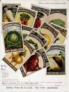 Vegetable seed packets, 1932