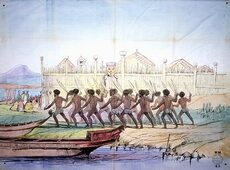 Traditional Māori Culture and Customs