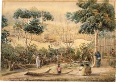 A sketch of Ruapekapeka pa, 11 January 1846, by Cyprian Bridge