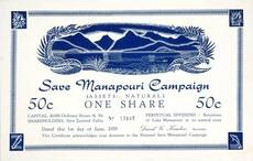 Save Manapouri share