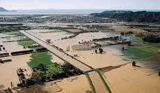 Flooding, Whakatāne