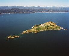 Islands in Wellington harbour