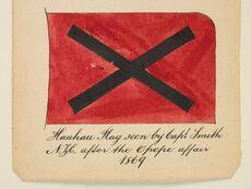 Maori rebel flag: Hau Hau flag