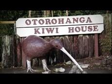 Ōtorohanga, the kiwi town