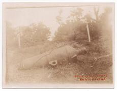Relic of Maori War, Ruapekapeka